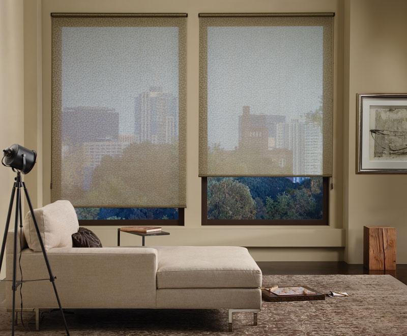 Hunter Douglas Window Shades Windows Beyond