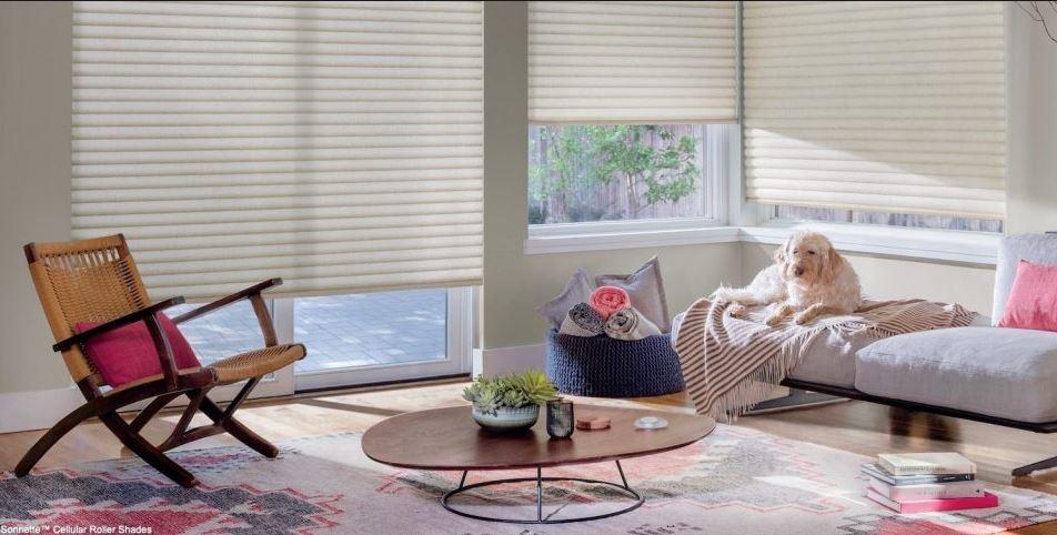 Palo Alto, CA window covering